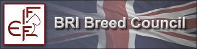 FIFe-BRI-BC banner